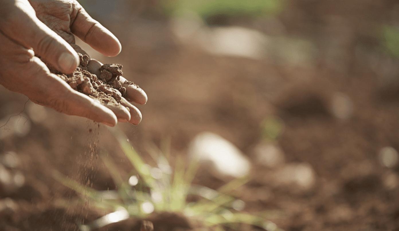 holding dry soil