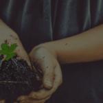 holding soil in hands